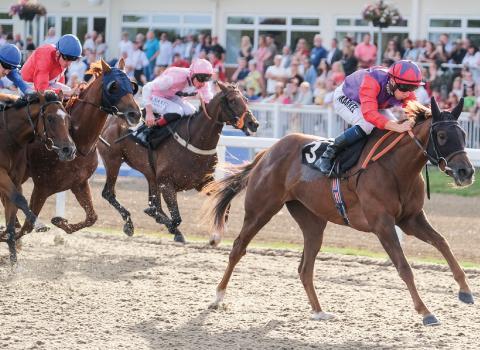 Chelmsford City Racecourse - Sports Bar Saturday