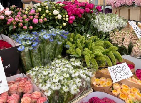 G S E Flowers - The Flower Stall