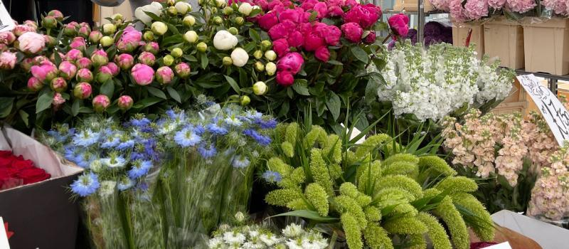 Faces of the Markets: G S E Flowers - The Flower Stall