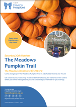 Charity pumpkin trail